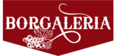 Borgaleria
